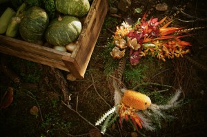 Fall bounty of local produce to be used at FEAST dinner event at Lumeria. Photo courtesy of Lumeria Maui.