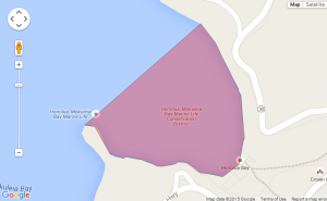 Honolua Bay brown water advisory map. Credit: State Department of Health/Google.