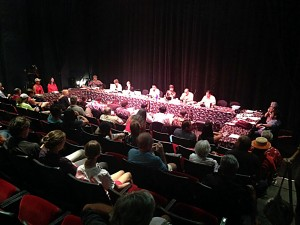 The state Land Use Committee heard from Maui residents who signed up to testify at the Maui Arts & Cultural Center's McCoy Studio Theater regarding acceptance of the Olowalu Town LLC and Olowalu Ekolu LLC's Final Environmental Impact Statement. File photo credit: Debra Lordan photo.