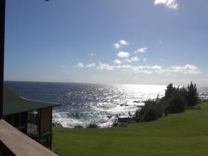 View from Travaasa Hana's ocean bungalows. Photo by Kiaora Bohlool.