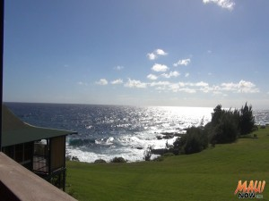 View from the cottages at Travaasa Hana. Photo by Kiaora Bohlool.