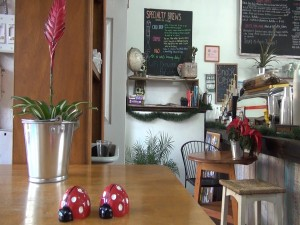 Ceramic ladybugs on the table at Belle Surf Café. Photo by Kiaora Bohlool.