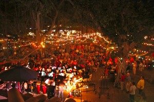 Annual Banyan Tree Lighting Ceremony. File photo credit: Lahaina Town Action Committee.