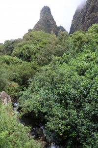ʻĪao Valley. Photo credit DLNR.