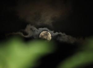 Moon over Maui. Courtesy photo.