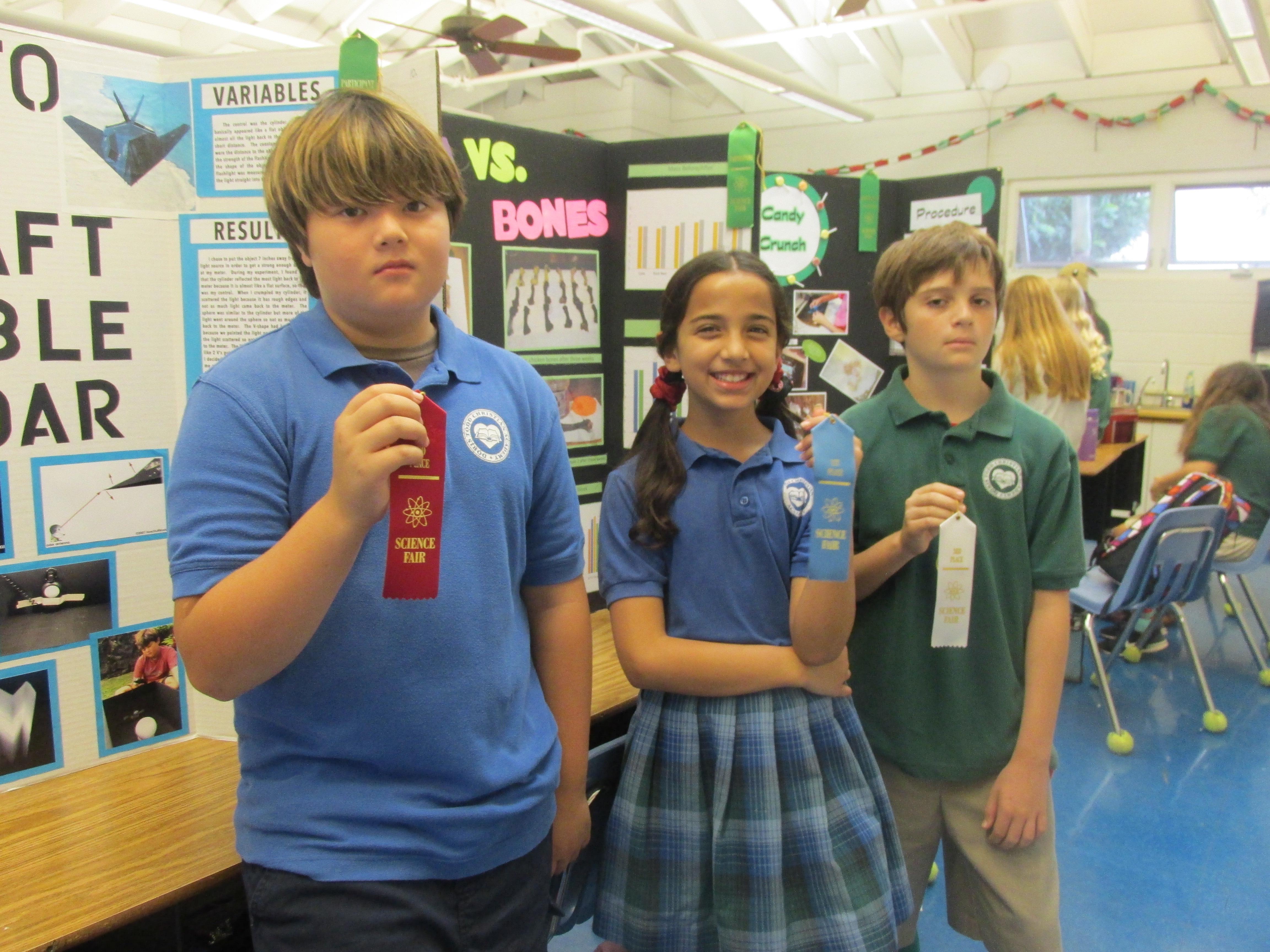 Sixth-grade winners of the Doris Todd Science Fair are:
