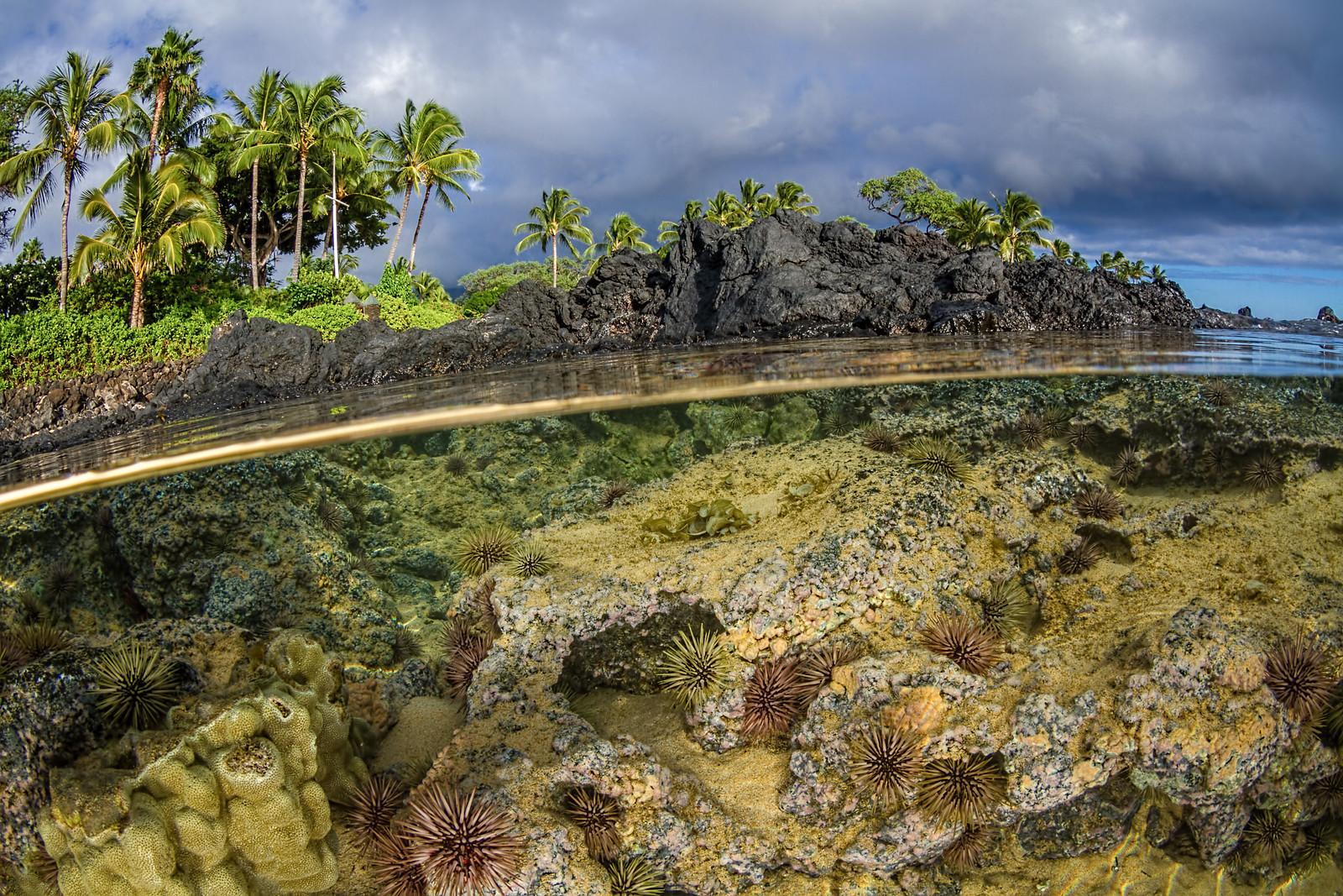 Secret Beach image courtesy Krannichfeld Photography.