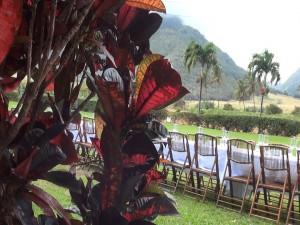 Ti leaves and table at Maui Tropical Plantation. Photo by Kiaora Bohlool.