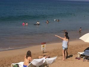 Shark sighting, Mokapu Beach. Photo credit: Nicole Schenfeld