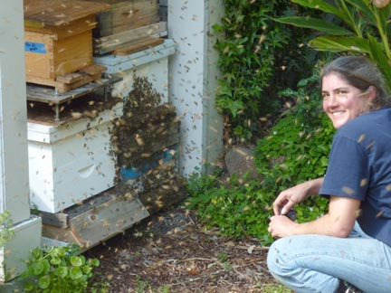Bonnie Morse. Image provided by The Maui Bee Conference.