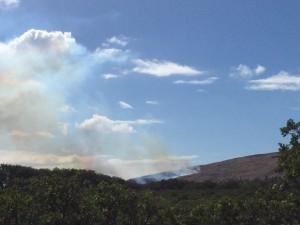 Fire in Māʻalaea, Jan. 21, 2016. Photo credit: Malika Dudley.