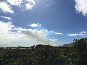 Fire in Māʻalaea, Jan. 21, 2016. Photo credit: Malika Dudley.