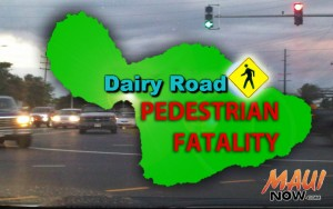 Dairy Road pedestrian fatality. Maui Now graphic.