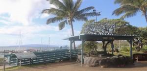 New Māʻalaea Lookout. Photo credit Maui Ocean Center.