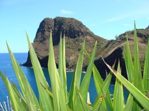 Kahakuloa, file photo by Wendy Osher.