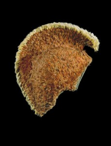 Mahiole (feathered helmet); 09.1997; Hall, Michael. Image courtesy: Te Papa Tongarewa.