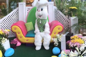 QKC Easter bunny. Courtesy photo.