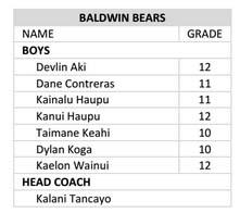 Baldwin Bears boys roster 2016.
