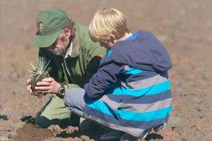 """Resource Manager Bill Haus assists a student with planting silversword """"keiki"""" at the summit of Haleakalā."""