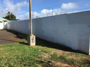 A mural will be painted on a 84-foot-long by 7-foot high wall in the Pā'ia Municipal Parking Lot on Hāna Highway.