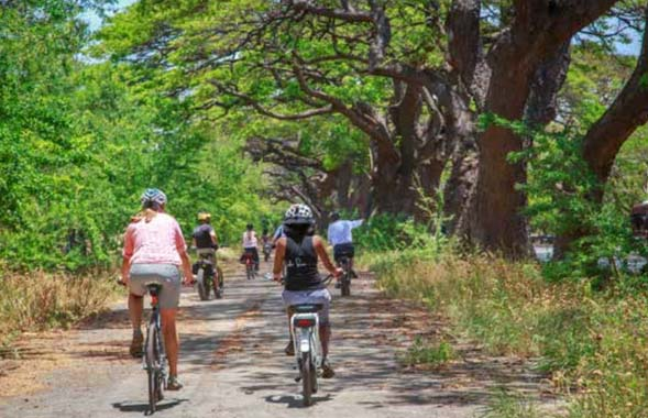 Ask The Mayor: What's the Progress on a West Maui Greenway?