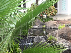 Fountain by the outdoor lanai at Gannon's. Photo by Kiaora Bohlool.