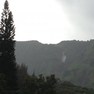 Makamakaʻole rescue. Photo credit: Becky Nakagawa.