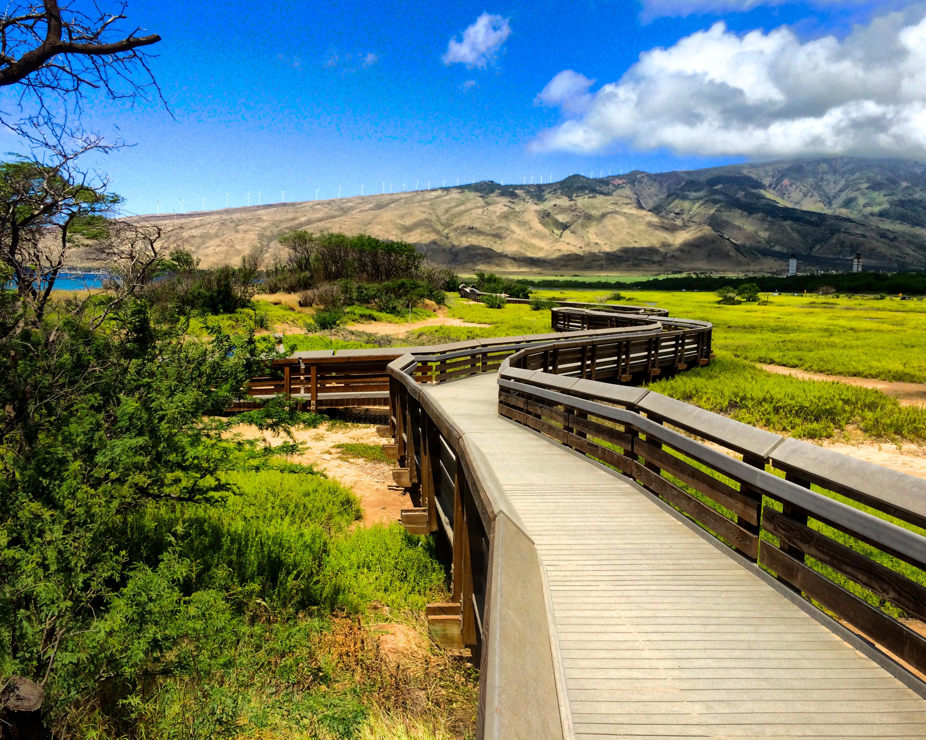 Kealia Pond NWF Offers Free Wildlife Activities