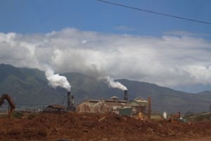 HC&S Puʻunēnē Mill. Photo by Wendy Osher.
