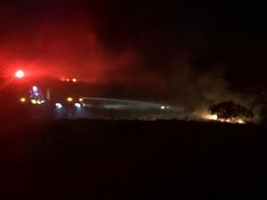 Pu'unoa brush fire, 3/9/16. Photo credit: Chuck Bergson.