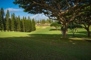 Pineapple Grill on Kapalua Bay Golf Course.  Photo © 2015, Dave Sansom
