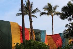 Termite tent, source: Google Images, 2016 (labeled for reuse) https://c2.staticflickr.com/8/7233/7345538430_e32c2ff5c5_b.jpg