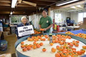 Hanako Hashimoto of Hashimoto Persimmon Farm will be one of three farmers honored at Maui County Ag Festival's Legacy Farmer's Breakfast on April 2. Courtesy photo.
