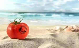 Tomato on the beach with Localicious logo. Photo courtesy of Hawai'i Agricultural Foundation.