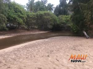 Brown water, Honokahua Bay (3.16.16). Photo courtesy: Hawaiʻi State Department of Health.