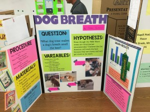 Chloe Ventura posed this question to kick-start her award-winning experiment that involved her dog, Pono, as the test subject.
