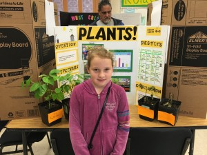 Can plants grow when watered with tap water, Pepsi, salt water and detergent? Debra Lordan photo.