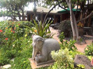 Statue on the grounds of Hyatt Regency Maui. Photo by Kiaora Bohlool.