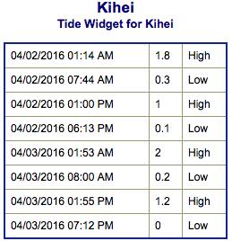 Screen Shot 2016-04-01 at 11.08.31 PM