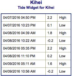 Screen Shot 2016-04-07 at 4.31.08 PM