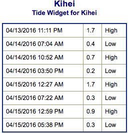 Screen Shot 2016-04-13 at 9.47.41 PM