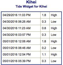 Screen Shot 2016-04-29 at 9.19.43 PM