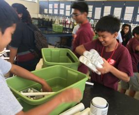 boys green bins aquaponics