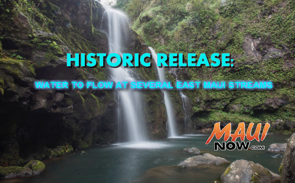 Maui Now Graphic. Background Image credit: Chris Archer.