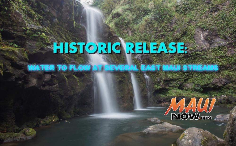 Maui Now Graphic. Background Image credit: Chris Archer.