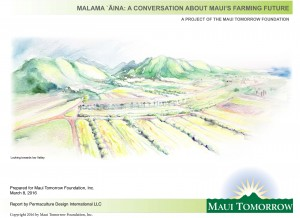 Mālama 'Āina: A Conversation About Maui's Farming Future. Report cover image courtesy Maui Tomorrow Foundation.