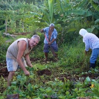 Nāpili Community Garden. Photo courtesy: seedsofchangegrant.com