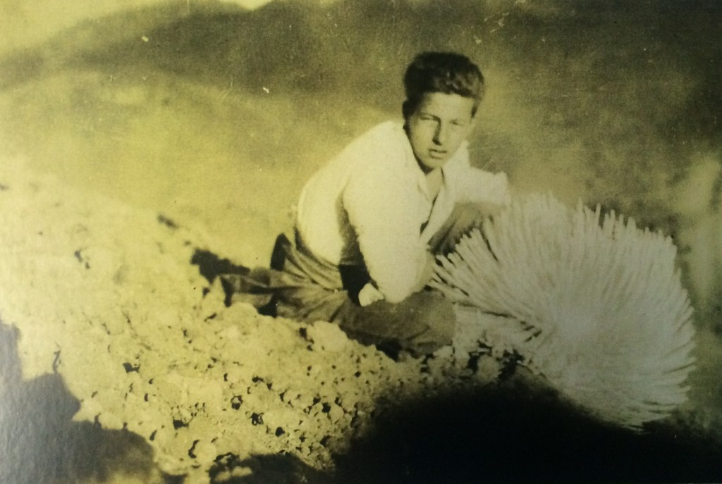 Uncle Rex and silversword--the CCC member we will talk story with on April 23. This is Uncle Rex in the mid 1930's while he was a CCC boy. Photo credit: Haleakalā National Park.