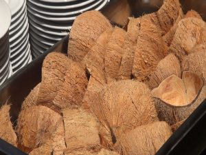 Coconut husks, used to serve the curry to guests at the cooking demo, Photo by Kiaora Bohlool.