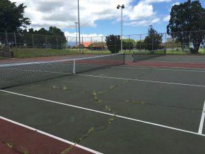 Eddie Tam tennis courts May 2016. Photo: Debra Lordan